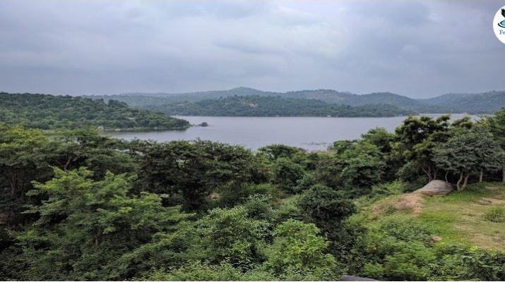 Place near Bangalore for a refreshing one-day road trip