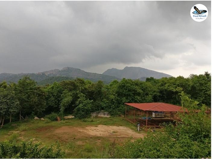 View of Savandurga