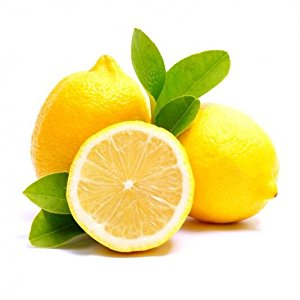 citrus : FeedKnock