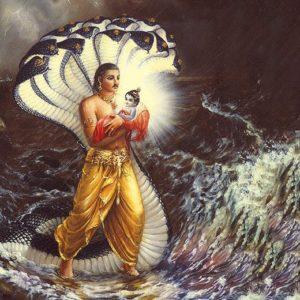 Krishna Janmashtami 4